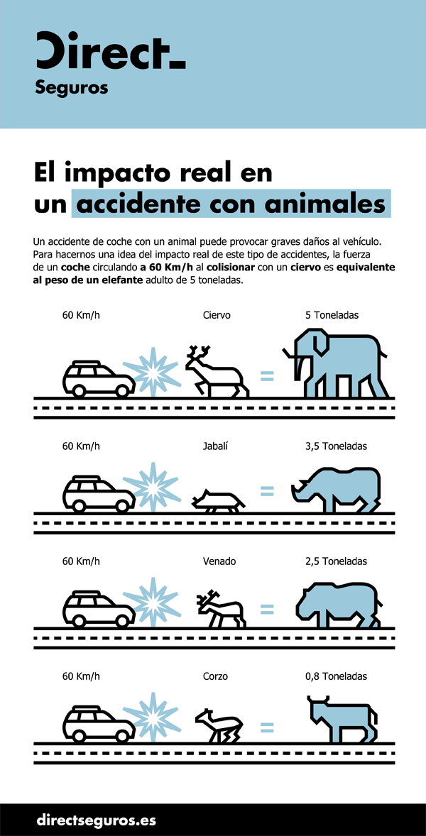Colision_Coche_Animal_DIRECT
