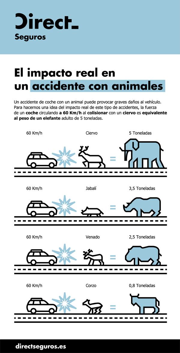 Colision_Coche_Animal_DIRECT