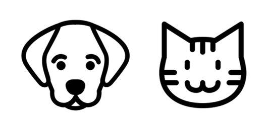 Direct Seguros - Viajar con mascotas