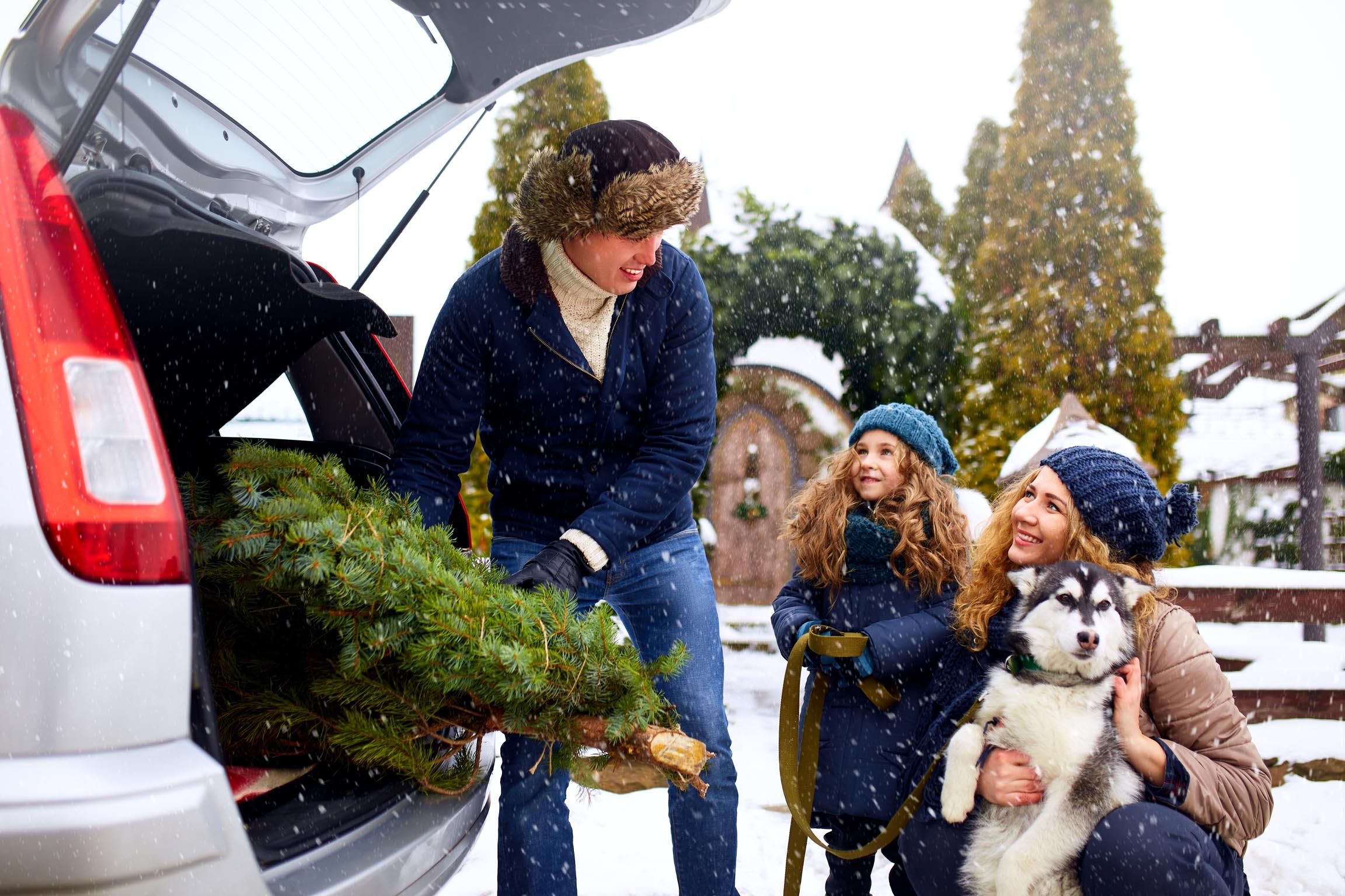 Restricciones movilidad navidad